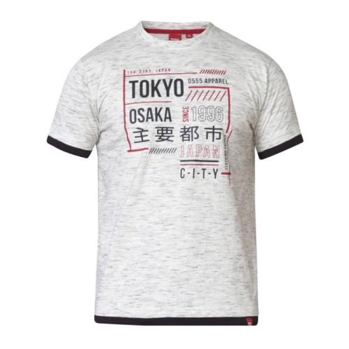 dd577ba68 A MERLIN-D555 T-shirt Biały Duże Rozmiary biggie.pl KS60172 Grey Reno